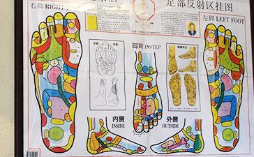 中国若石健康法の反射区の図。